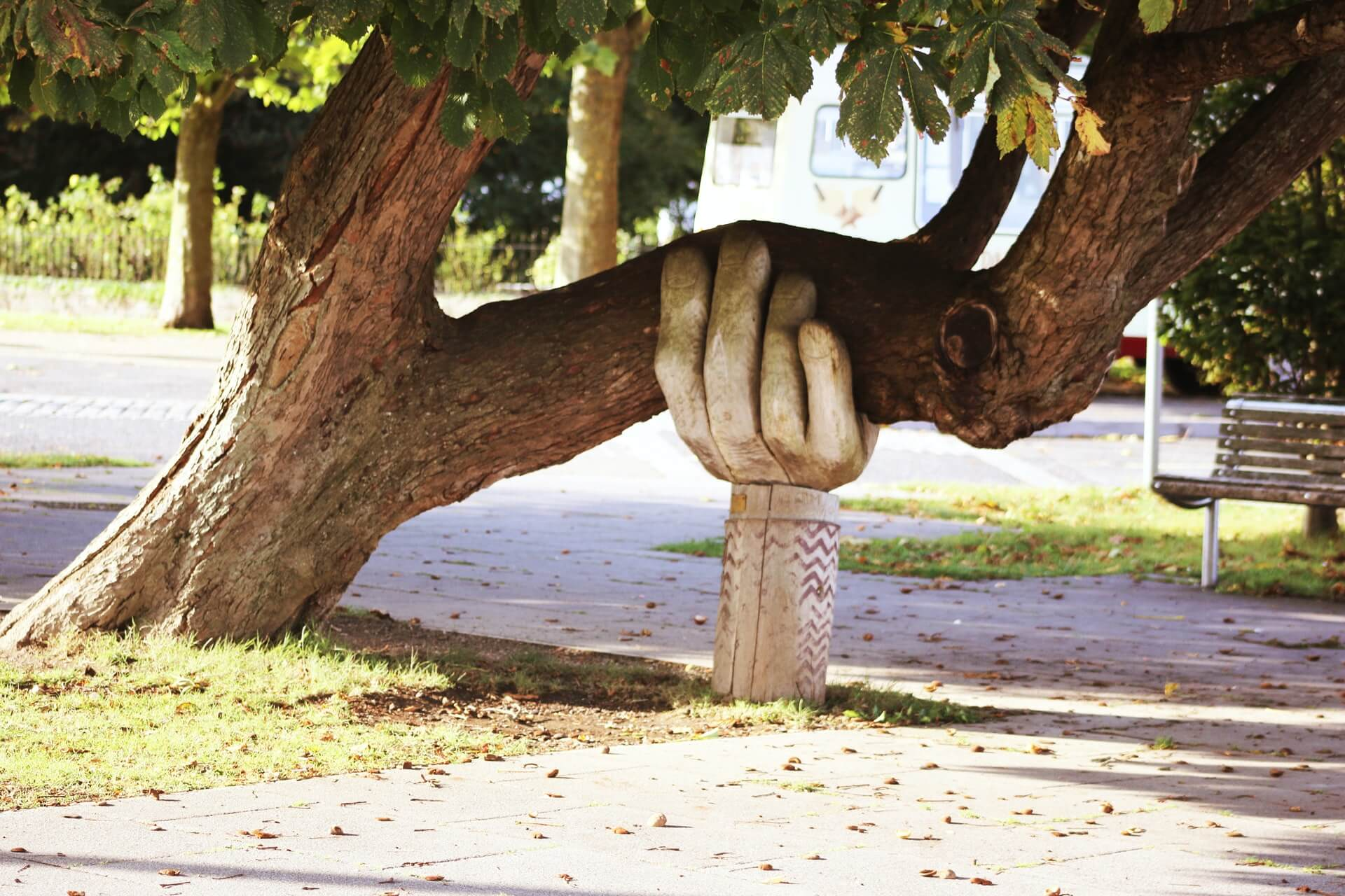 Tree branch held up by sculpture of a human hand. Photo by Neil Thomas from Unsplash