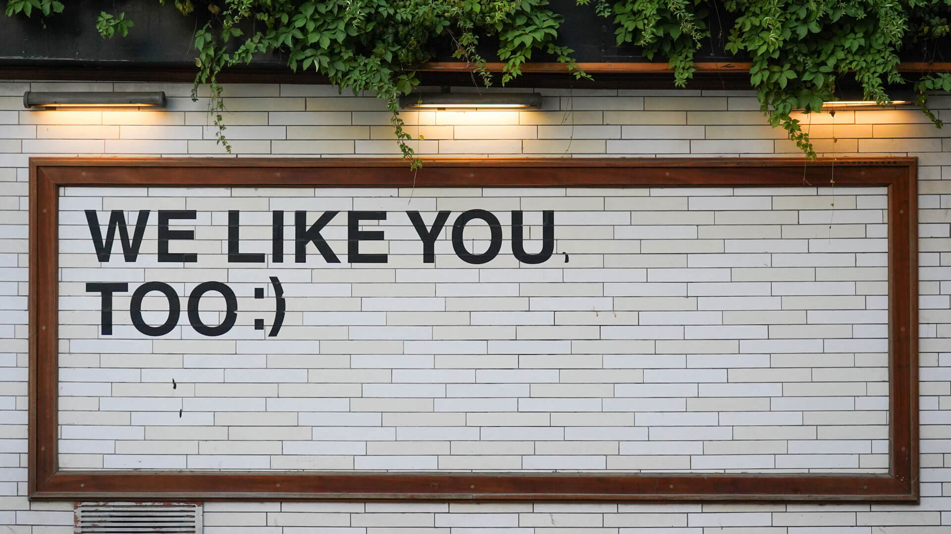 Text on a wall which reads We Like You too